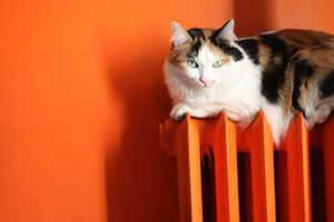 Sistemas de calefacción por radiadores